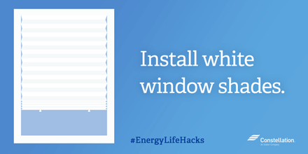 Install white window shades.