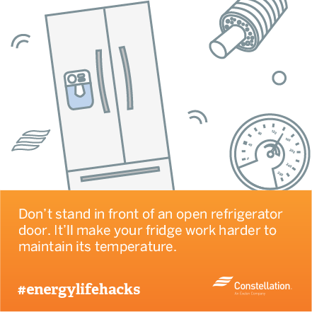 energy saving tip - dont stand in front of open fridge