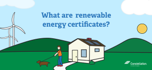 What are renewable energy certificates?