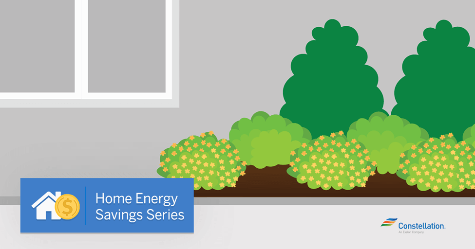 Home Energy Savings Series Creating an Energy Efficient Garden