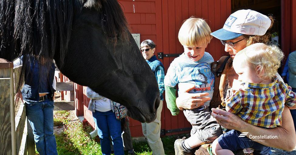 community-champion-winner-wolf-den-farm