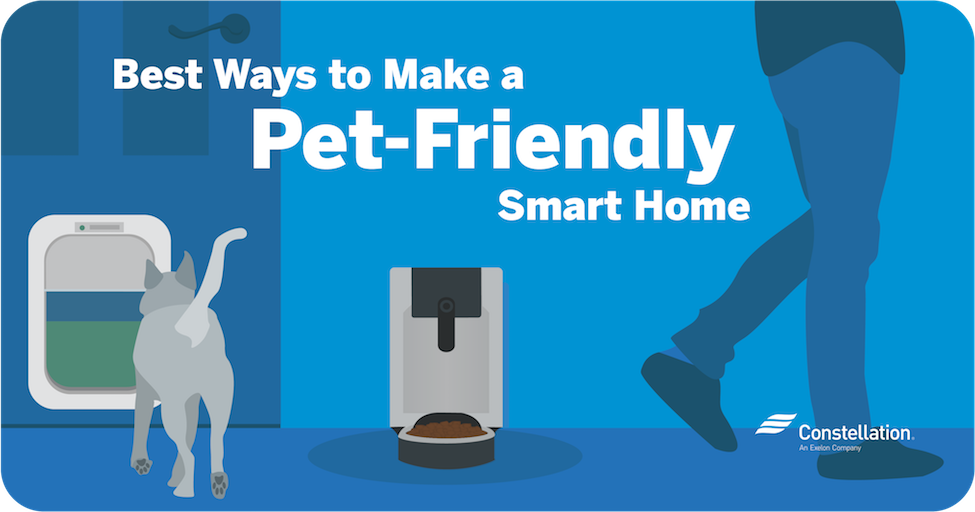 best pet tech products for smart homes