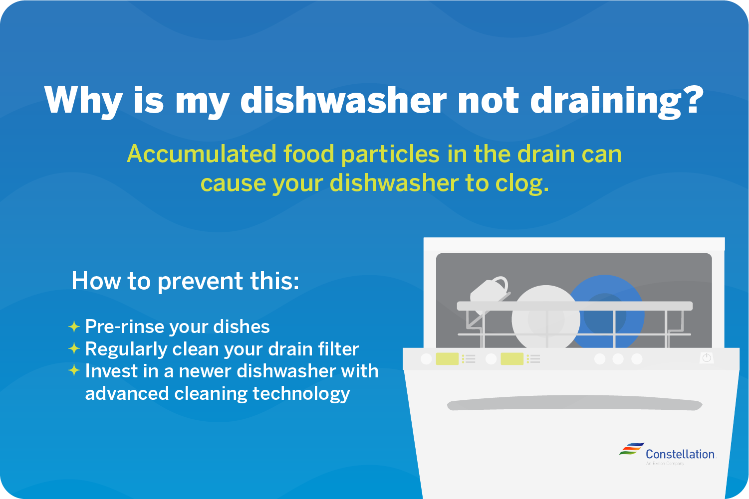 why-is-my dishwasher not draining