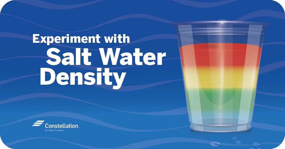 Salt Water Density Experiment