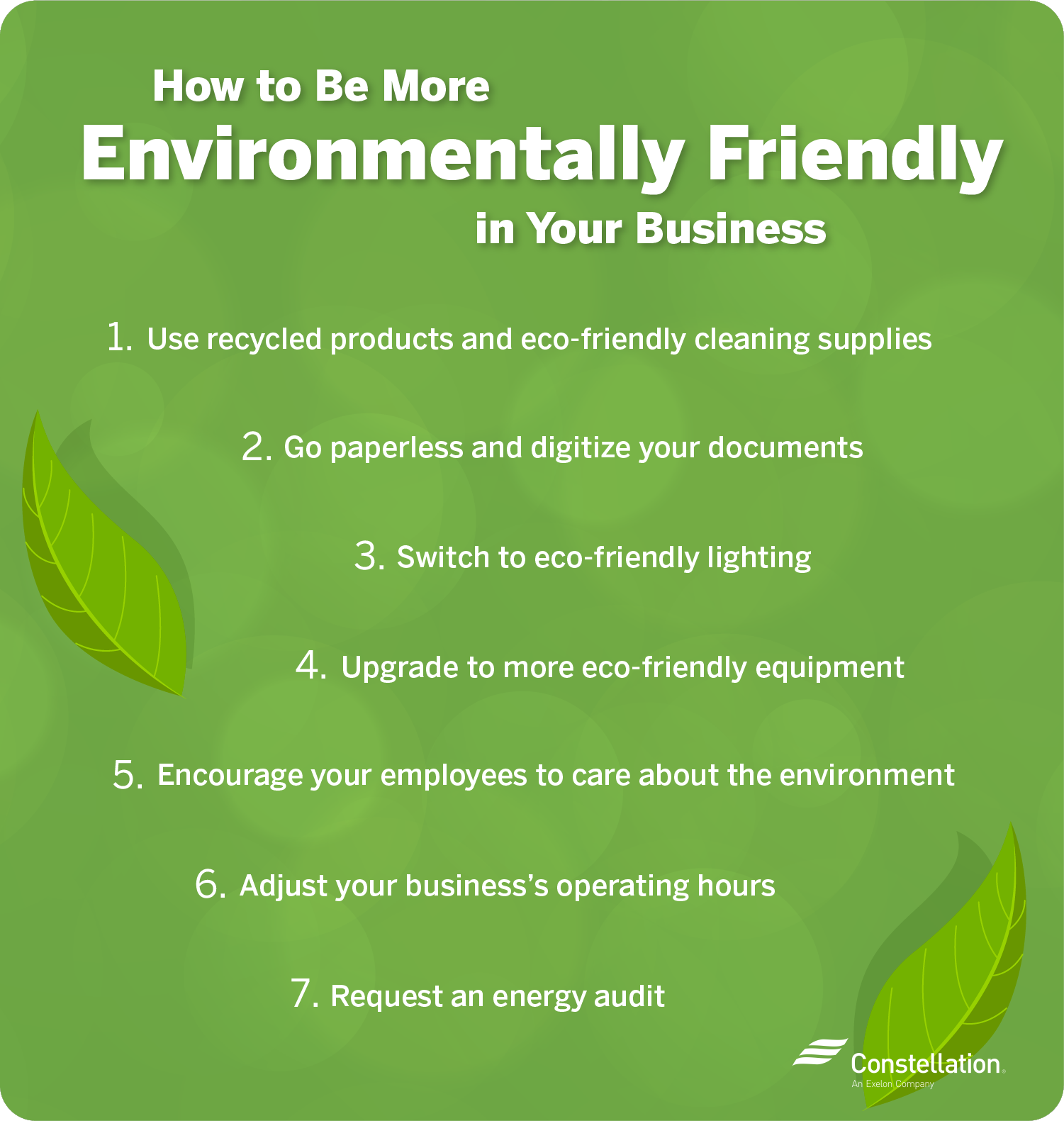 How to be more environmentally friendly in your business