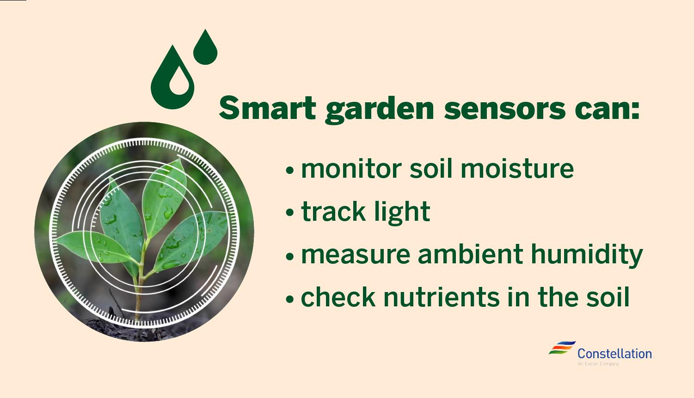 What smart garden sensors can do